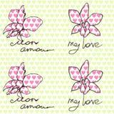 Modello senza cuciture con le orchidee e le iscrizioni circa amore in inglese e francese illustrazione vettoriale