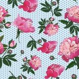 Modello senza cuciture con le peonie rosa sul piccolo fondo del pois Vettore royalty illustrazione gratis