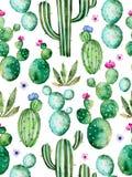 Modello senza cuciture con le piante dipinte a mano del cactus dell'acquerello di alta qualità ed i fiori porpora Fotografie Stock