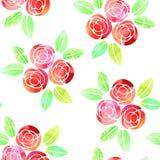 Modello senza cuciture con le rose dell'acquerello su fondo bianco Immagini Stock
