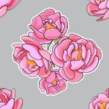 Modello senza cuciture con le rose rosa. Fotografia Stock Libera da Diritti