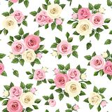 Modello senza cuciture con le rose rosa e bianche Illustrazione di vettore illustrazione di stock