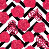 Modello senza cuciture con le rose rosse e cuore di amore su spirito del fondo Fotografia Stock Libera da Diritti