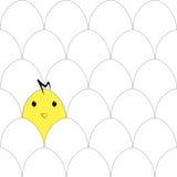Modello senza cuciture con le uova ed il pollo Fotografia Stock
