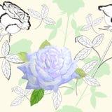 Modello senza cuciture con roses-02 Immagini Stock