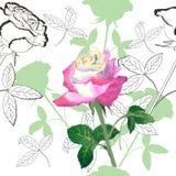 Modello senza cuciture con roses-03 Fotografie Stock Libere da Diritti