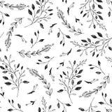 Modello senza cuciture con varie erbe Il nero su bianco Fotografia Stock