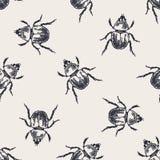 Modello senza cuciture d'annata degli scarabei Illustrazione Vettoriale