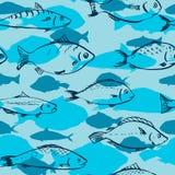 Modello senza cuciture dai pesci illustrazione di stock