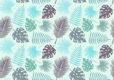 Modello senza cuciture dalle foglie dell'albero tropicale decorazione Illustrazione di vettore Fotografia Stock