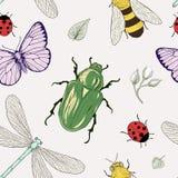 Modello senza cuciture degli insetti Fotografia Stock Libera da Diritti