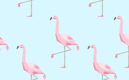 modello senza cuciture degli uccelli del fenicottero sopra fondo blu Immagini Stock Libere da Diritti