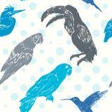 Modello senza cuciture degli uccelli disegnati a mano dell'inchiostro Fotografia Stock