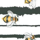 Modello senza cuciture dei bombi delle api di vettore del fumetto Fotografia Stock