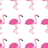 Modello senza cuciture dei fenicotteri di rosa su fondo bianco Posizione diritta Parco dell'uccello dello zoo illustrazione di pr royalty illustrazione gratis