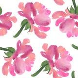Modello senza cuciture dei fiori rosa dell'acquerello rosa Immagine Stock Libera da Diritti