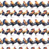 Modello senza cuciture dei galli differenti dell'acquerello della truppa Fotografia Stock Libera da Diritti