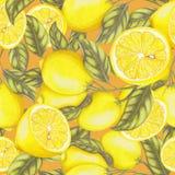 Modello senza cuciture dei limoni freschi Fotografie Stock