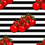 Modello senza cuciture dei pomodori ciliegia Fotografie Stock Libere da Diritti