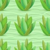 Modello senza cuciture dei succulenti Fotografia Stock