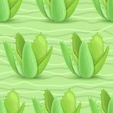 Modello senza cuciture dei succulenti Immagini Stock