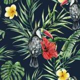 Modello senza cuciture dei tucani dell'acquerello e dei fiori tropicali Uccello dipinto a mano, foglie, ibisco, plumeria isolato  royalty illustrazione gratis