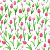 Modello senza cuciture dei tulipani della primavera Fotografie Stock Libere da Diritti