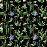 Modello senza cuciture del cactus dell'acquerello Immagini Stock Libere da Diritti