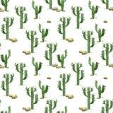 Modello senza cuciture del cactus dell'acquerello Immagine Stock