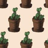 Modello senza cuciture del cactus disegnato a mano Immagini Stock Libere da Diritti