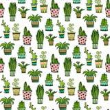 Modello senza cuciture del cactus e del succulente Fiori variopinti di scarabocchio in vasi Fondo di vettore Fotografie Stock
