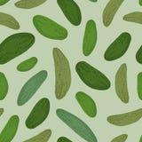 Modello senza cuciture del cetriolo Pic della verdura di verde del fondo di vettore illustrazione vettoriale