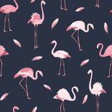 Modello senza cuciture del fenicottero degli uccelli della piuma rosa dello stormo royalty illustrazione gratis