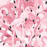Modello senza cuciture del fenicottero di vistosità rosa degli uccelli illustrazione vettoriale