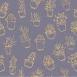 Modello senza cuciture del fondo del cactus Fotografie Stock Libere da Diritti