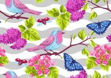 Modello senza cuciture del giardino della primavera Illustrazione naturale con il fiore del fiore, l'uccellino del pettirosso e l Fotografia Stock Libera da Diritti