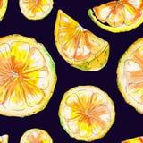 Modello senza cuciture del limone disegnato a mano dell'acquerello royalty illustrazione gratis