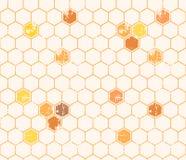 Modello senza cuciture del miele con le cellule descritte del miele Fotografie Stock