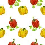 Modello senza cuciture dell'acquerello con giallo e peperoni e prezzemolo fondo con i peperoni dolci può essere usato per Immagini Stock