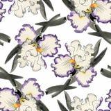 Modello senza cuciture dell'acquerello con i fiori variopinti e le foglie su fondo bianco, modello floreale dell'acquerello, fior Fotografia Stock