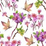 Modello senza cuciture dell'acquerello con i fiori variopinti e le foglie su fondo bianco, modello floreale dell'acquerello, fior Immagine Stock Libera da Diritti