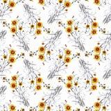 Modello senza cuciture dell'acquerello con i fiori variopinti e le foglie su fondo bianco, modello floreale dell'acquerello, fior Fotografia Stock Libera da Diritti