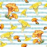 Modello senza cuciture dell'acquerello con i funghi illustrazione di stock