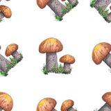 Modello senza cuciture dell'acquerello con i funghi royalty illustrazione gratis