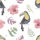 Modello senza cuciture dell'acquerello con i tucani, i fiori tropicali e le foglie su fondo bianco Fotografie Stock