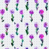 Modello senza cuciture dell'acquerello con i tulipani ed il fondo del pois Il fondo per le pagine Web, inviti di nozze, conserva  Fotografia Stock Libera da Diritti