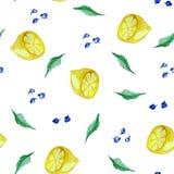 Modello senza cuciture dell'acquerello con il limone, il mirtillo e la menta illustrazione vettoriale