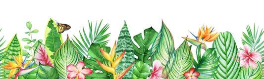 Modello senza cuciture dell'acquerello con le foglie, le piante ed i fiori tropicali illustrazione vettoriale
