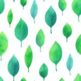 Modello senza cuciture dell'acquerello con le foglie verdi Fotografia Stock Libera da Diritti