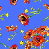 Modello senza cuciture dell'acquerello dei fiori Fotografia Stock